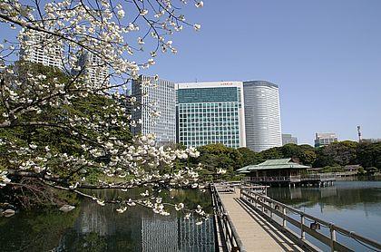 Hamarikyu-Garten